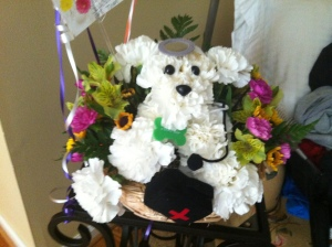 Doggie flower arrangement from my coworkers.  So cute!!